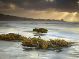 Sunbeams Through Storm Clouds with Seaweeds Washed Ashore on the Sandy Beach Near San Diego