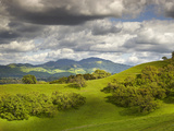 Billowing Cumulus Clouds Build Up on a Spring Afternoon Following a Storm  Mount Diablo  California
