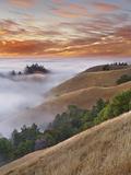 Fog Bank over San Francisco Bay Viewed from Mt Tamalpais  California  USA