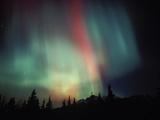 Aurora Borealis  Alaska  USA