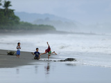 Kids Playing on the Beach While Olive Ridley Sea Turtle Come Ashore