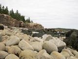 Water Worn Rocks  Low Tide  Acadia National Park  Maine