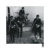 The Beatles VIII