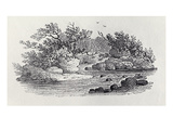 A Bend in the River from 'History of British Birds  Volume 2: Water Birds'  1804 (Woodcut)