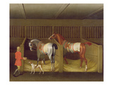 The Stables and Two Famous Running Horses Belonging to His Grace  the Duke of Bolton  1747
