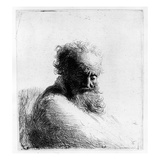 Head of an Old Man  1631 (Etching)