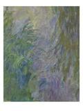 Waterlilies (Detail)