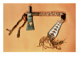 Tomahawk Pipe  Blackfoot Tribe (Steel and Textile)