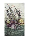 Giant Octopus  Illustration from 'L'Histoire Naturelle Generale Et Particuliere Des Mollusques'
