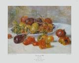 Fruit du Midi 1881