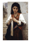 The Little Knitter