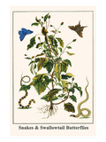 Snakes and Swallowtail Butterflies