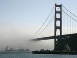 APTOPIX Golden Gate Fog