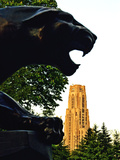 University of Pittsburgh - Cathedral and Panther