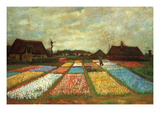 Flower Beds of Holland Reproduction d'art par Vincent Van Gogh