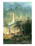 Cho-Looke  Yosemite Waterfall