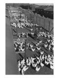 Poultry Farm Reproduction d'art par Ansel Adams