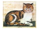 Folk Art: Cat