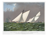 America's Cup  1885