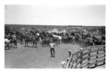 Texas: Cowboy  1939