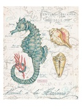 Centuria Seahorse Reproduction d'art par Chad Barrett