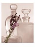 Lavender Detail