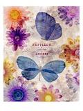 Fleur De Papillion 1