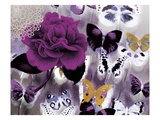 Butterfly Collage Magenta