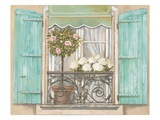 French Shutters 2
