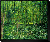 Woods and Undergrowth  c1887