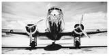 Passenger Airplane on Runway Reproduction d'art par Philip Gendreau