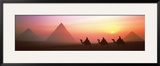 The Great Pyramids of Giza  Egypt