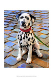 Chiot dalmatien Reproduction d'art par Robert Mcclintock