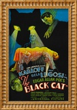 The Black Cat  Boris Karloff  Harry Cording  Jacqueline Wells  Bela Lugosi  1934