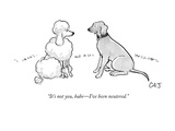 """It's not you  babe—I've been neutered"" - New Yorker Cartoon"