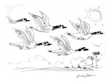Geese flying on sunny day  wearing sunglasses - Cartoon