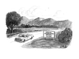 A couple  in car pass by a roadsign that reads 'Special Advertising Sectio… - New Yorker Cartoon
