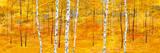 Iridescent Trees II