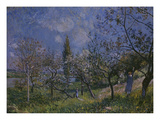 The Orchard  1881