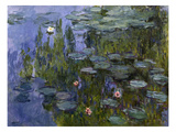 Water Lilies (Nympheas)  1918/1921