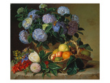 Hydrangea in a Jug and a Basket with Oranges  Lemons and Figs  1834