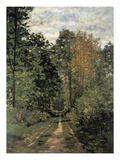 Forest Cart Road