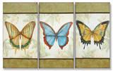 Le Papillon Triptych Art