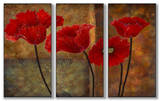 Poppies on Spice Triptych Art