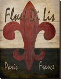 Fleur De Lis Tableau sur toile par Karen J. Williams