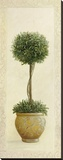 Topiary Ball I Tableau sur toile par Welby