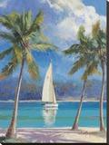 Brise des îles Tableau sur toile par Nenad Mirkovich