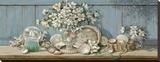 Collection de coquilles de mer II Tableau sur toile par Janet Kruskamp