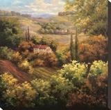 Mediterranean Valley Farm