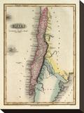 Chili, c.1823 Tableau sur toile par Fielding Lucas